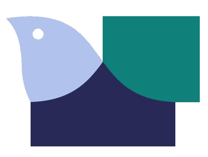 Birds Relations